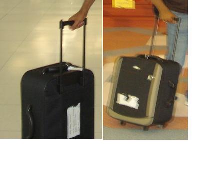 Lost Bag.png