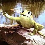 Froggy-Frog